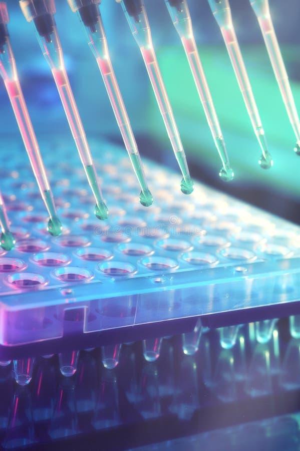 科学的背景 脱氧核糖核酸analysi的多途径吸移管技巧 库存照片