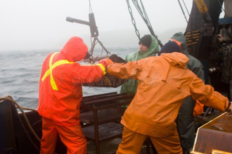 科学 海生物  从dept去除Petersen劫掠(底下取样器) 库存图片