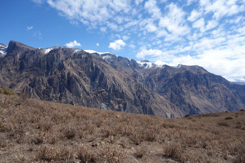 科尔卡峡谷在南秘鲁 库存照片