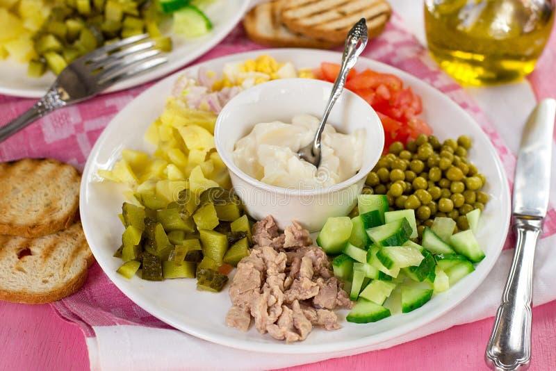科布与切成小方块的菜和罐装鳕鱼肝脏的样式沙拉 免版税库存照片
