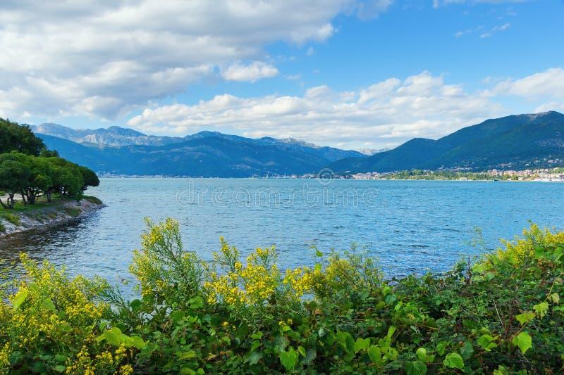 科托尔湾的看法。黑山 免版税库存照片