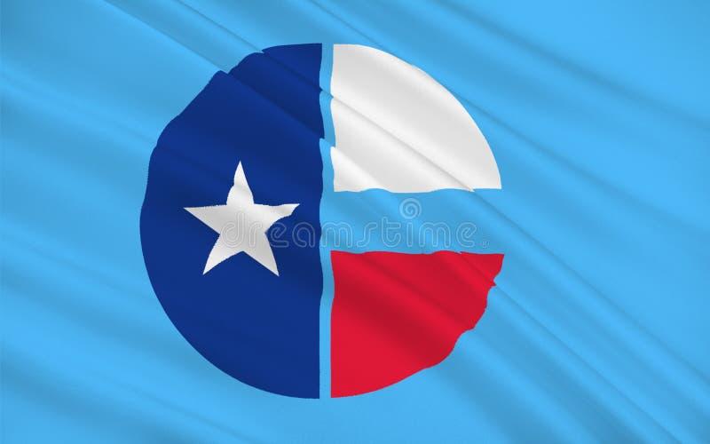 科林县旗子在得克萨斯,美国 向量例证
