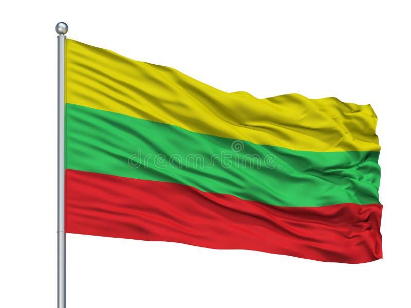 科洛尼亚省托瓦在旗杆,委内瑞拉的市旗子,隔绝在白色背景 皇族释放例证