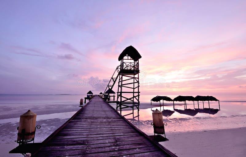 科科岛在古巴 库存照片