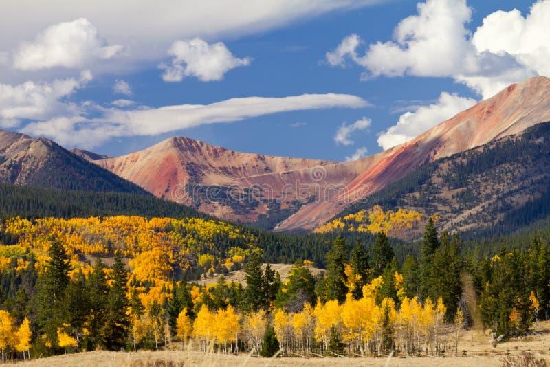 科罗拉多与秋天白杨木的山横向 免版税库存照片