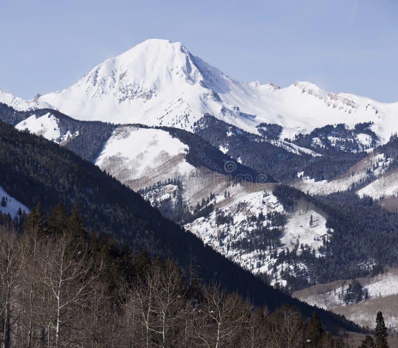 科罗拉多山野荒地 库存图片