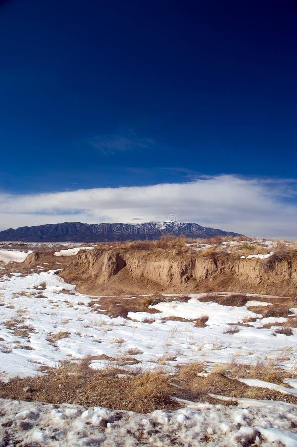 科罗拉多沙漠山雪 库存照片