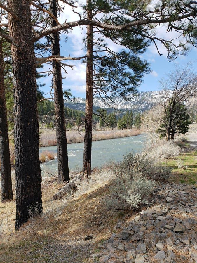 科罗拉多河山景 免版税库存照片