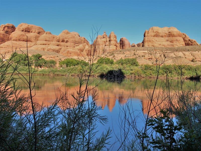科罗拉多河红色岩石反射 库存照片