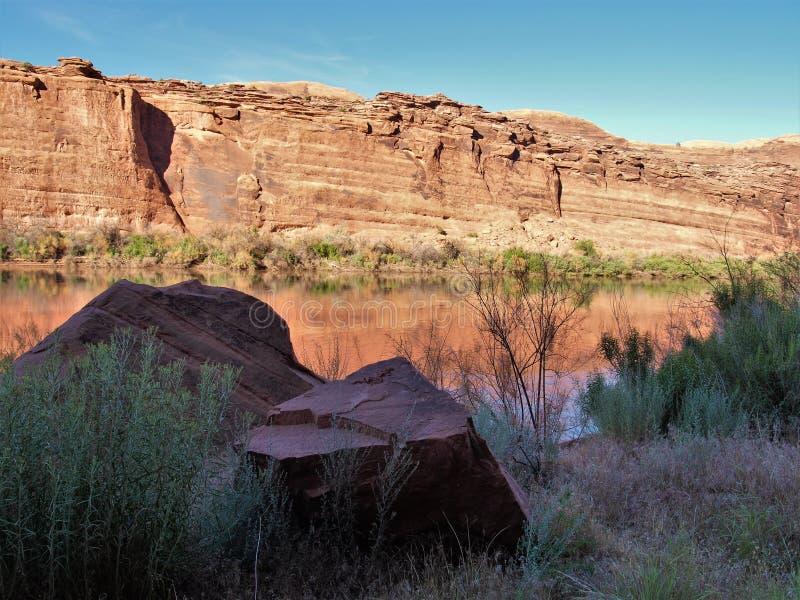 科罗拉多河红色岩石反射 库存图片