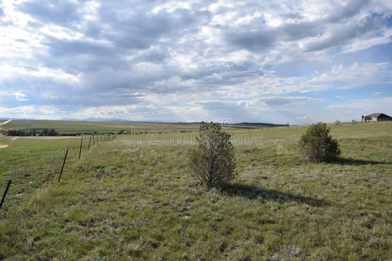 科罗拉多泉农场 免版税库存照片