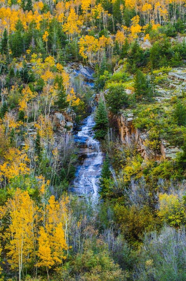 科罗拉多秋天上色高山水小瀑布 库存图片