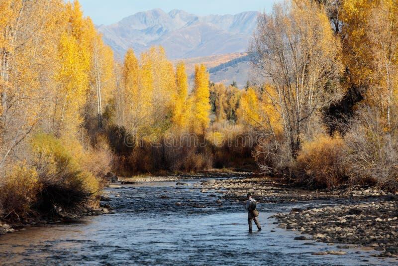 科罗拉多秋天风景 免版税图库摄影