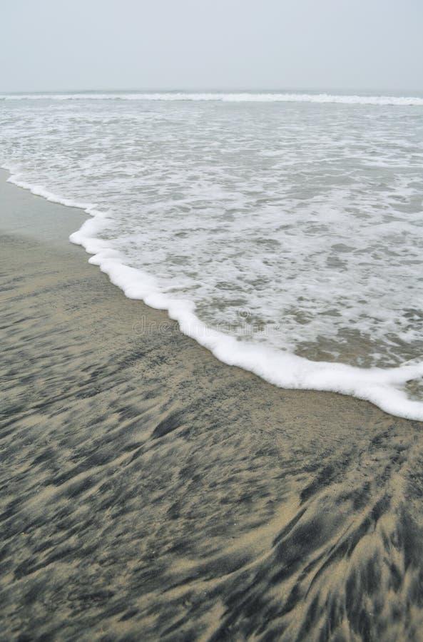 科罗纳多海岛银子线海滩 库存照片