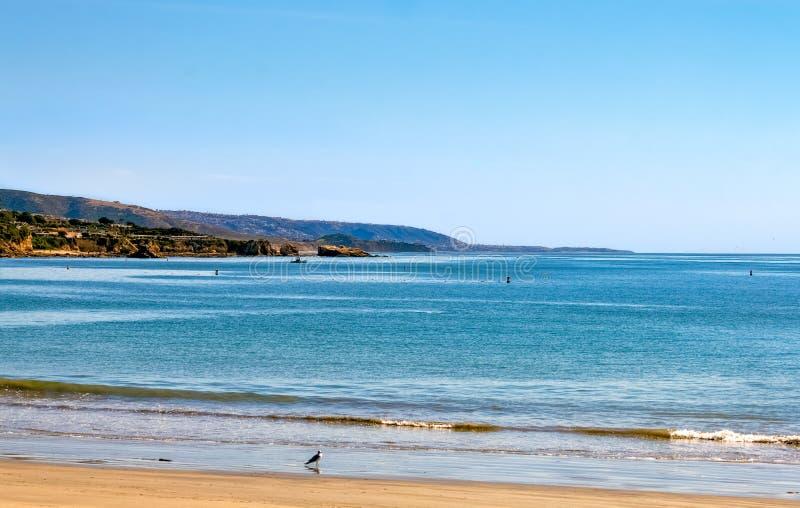 科罗纳德尔马海滩风景优美的海岸线景观 免版税库存图片