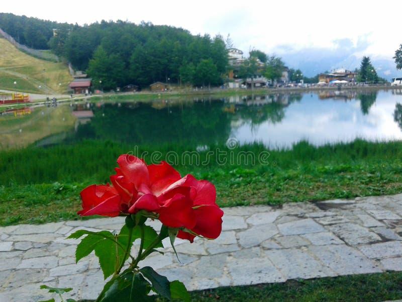 科莫` s湖 免版税图库摄影