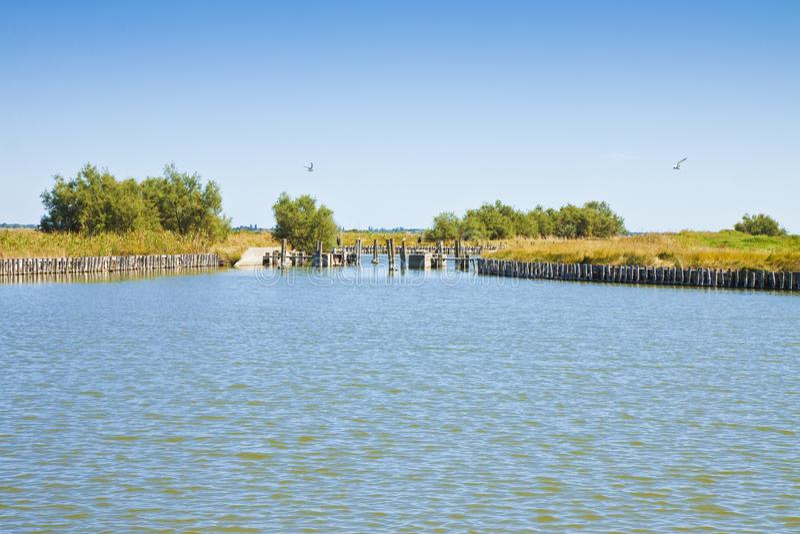 科马基奥谷为鳗鱼钓鱼-联合国科教文组织被保护区费拉拉市知道全世界-伊米莉亚罗马甘-意大利 库存照片