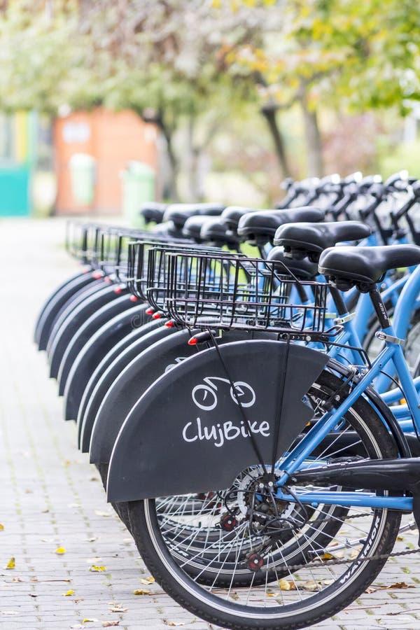 科鲁自行车分享 免版税库存图片