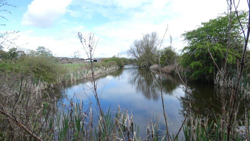 秘密池塘一个浪漫地方在森林里 免版税库存照片