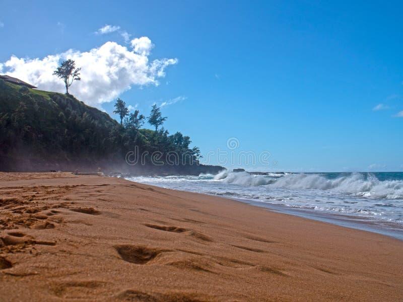 秘密海滩沙子江边考艾岛夏威夷美国 库存照片