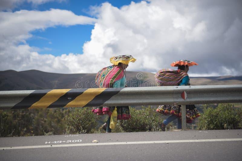 秘鲁妇女 库存图片