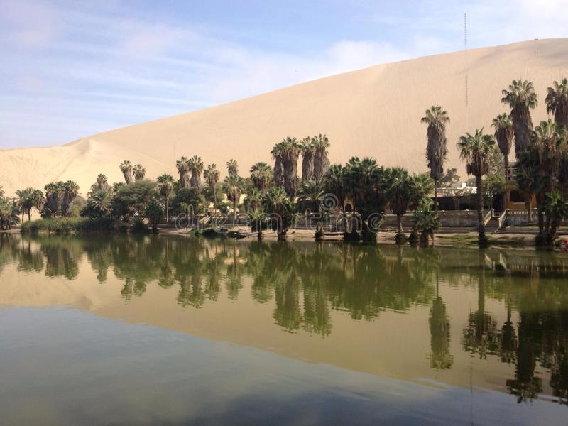 秘鲁绿洲 图库摄影