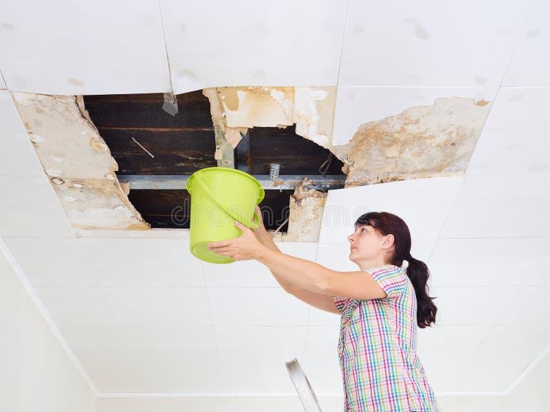 积在桶的少妇水从天花板 天花板平底锅 免版税库存图片