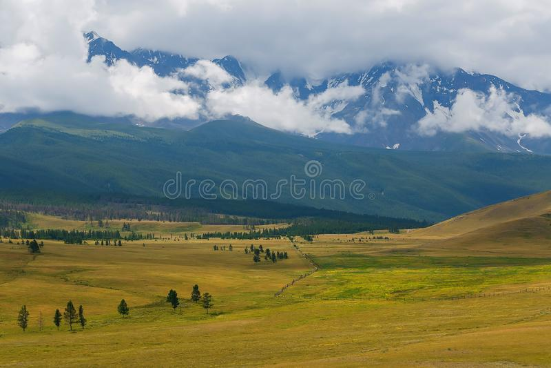 积雪的北部Chuya范围的风景看法在阿尔泰山在夏天,西伯利亚,俄罗斯的 库存照片