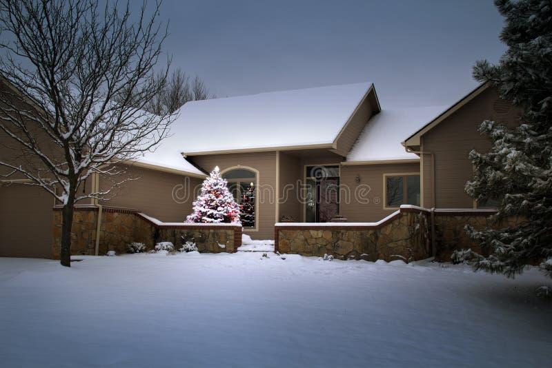积雪的圣诞树在这个冬天场面奇迹般地发光 免版税库存照片