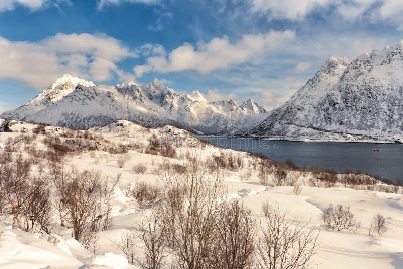 积雪的山在冬天 免版税库存图片