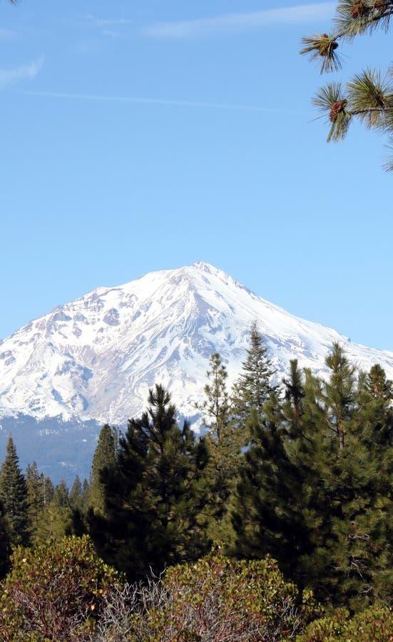 积雪的沙斯塔山,北加利福尼亚 免版税库存图片