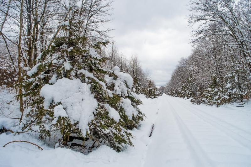 积雪的铁轨 库存照片