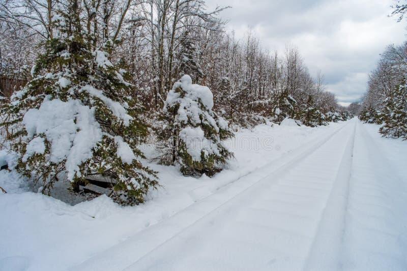 积雪的铁轨 库存图片