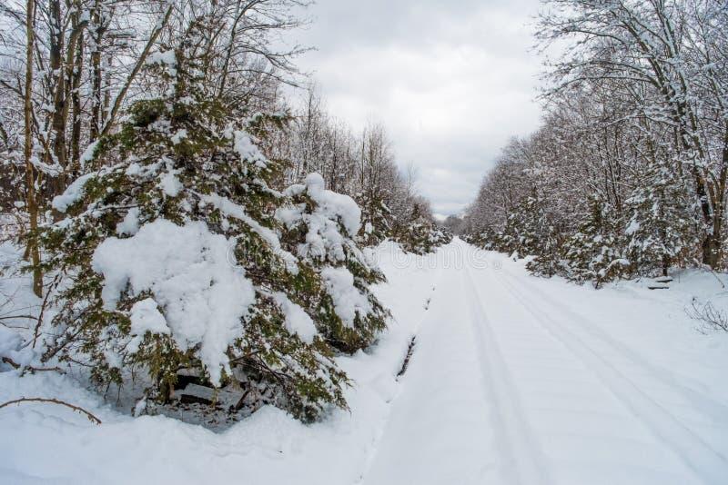 积雪的铁轨 图库摄影