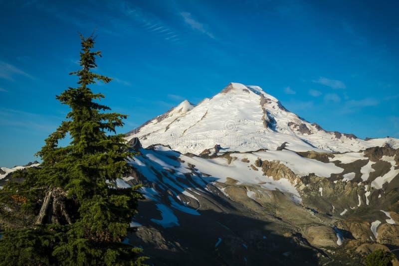 积雪覆盖的登上贝克,雷鸟里奇,华盛顿州Cascad 库存照片
