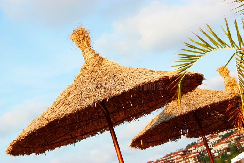 秸杆沙滩伞 库存照片