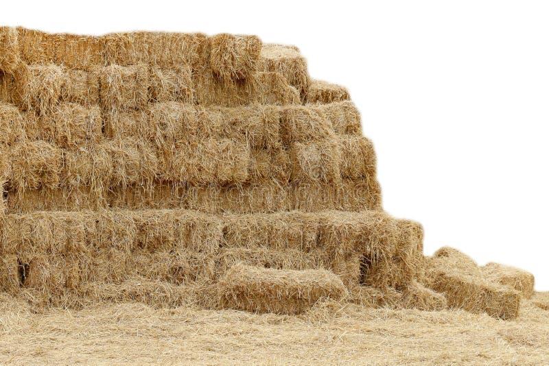 秸杆,山形状干燥秸杆的干草,秸杆许多在白色背景,秸杆块立方体,备草粮干燥背景山形状 免版税图库摄影