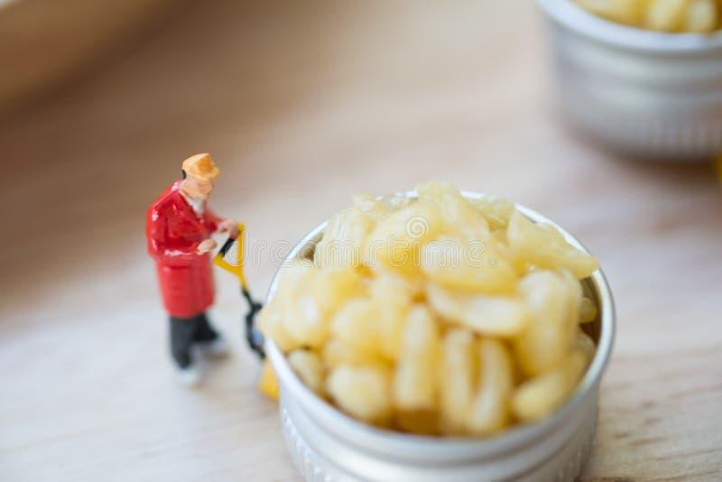移动出口的微型人工作者油煎的绿豆泰国开胃菜 免版税库存图片