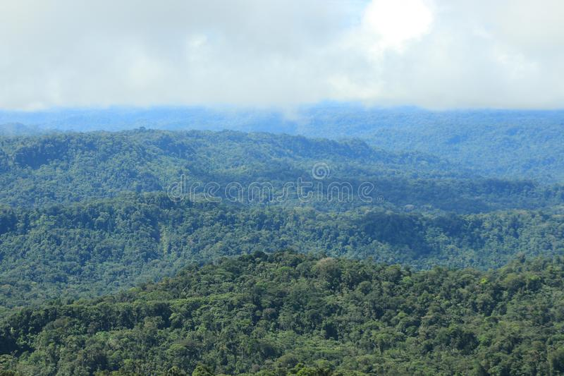 移动热带雨林和的云彩看法  库存图片