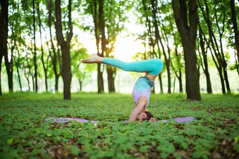 稀薄的深色的女孩演奏体育并且在日落背景的一个夏天公园执行瑜伽姿势 做在瑜伽的妇女锻炼 库存照片