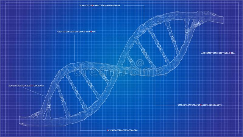 程序化图纸核糖核酸的脱氧核糖核酸程序化脱氧核糖核酸计算模型 皇族释放例证