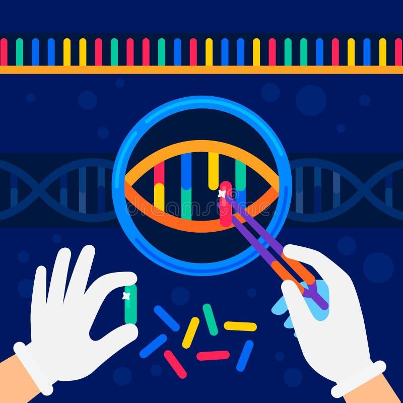 程序化概念的染色体 纳米技术和生化实验室 科学家的手与脱氧核糖核酸螺旋一起使用 皇族释放例证