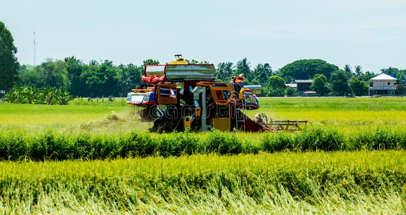 程逸,泰国, 5月18,2018 :农业车收获在米领域的米在程逸省,泰国 免版税图库摄影