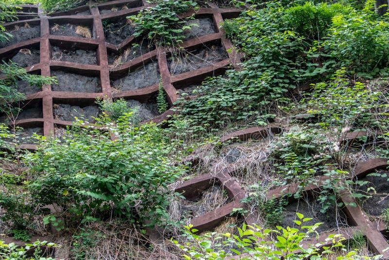稳定的具体栅格在路的森林里 免版税库存照片