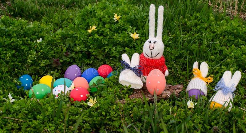 滑稽的兔子和复活节彩蛋与被编织的兔宝宝帽子在绿草 愉快的复活节 免版税库存图片