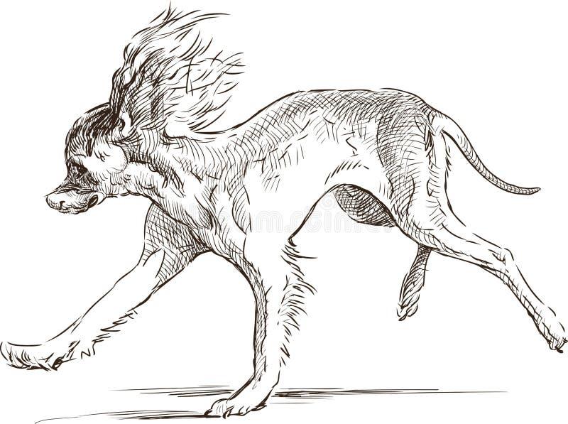 滑稽的跳跃的狗 皇族释放例证