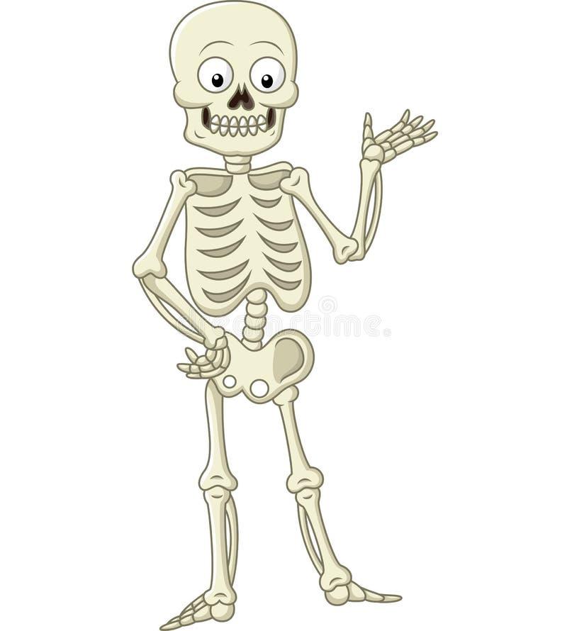 滑稽骨骼提出 皇族释放例证