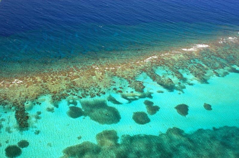 空中加勒比珊瑚礁 免版税库存图片