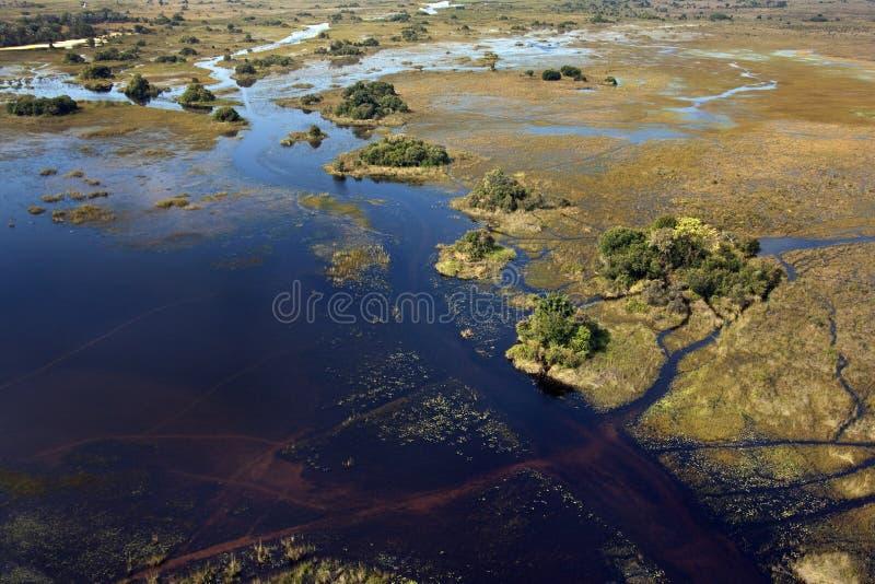 空中博茨瓦纳Delta okavango视图 免版税库存照片