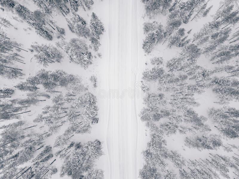 空中寄生虫视图用雪和路盖的冬天森林 免版税库存图片
